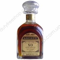 Ascott X.O. 0.7L